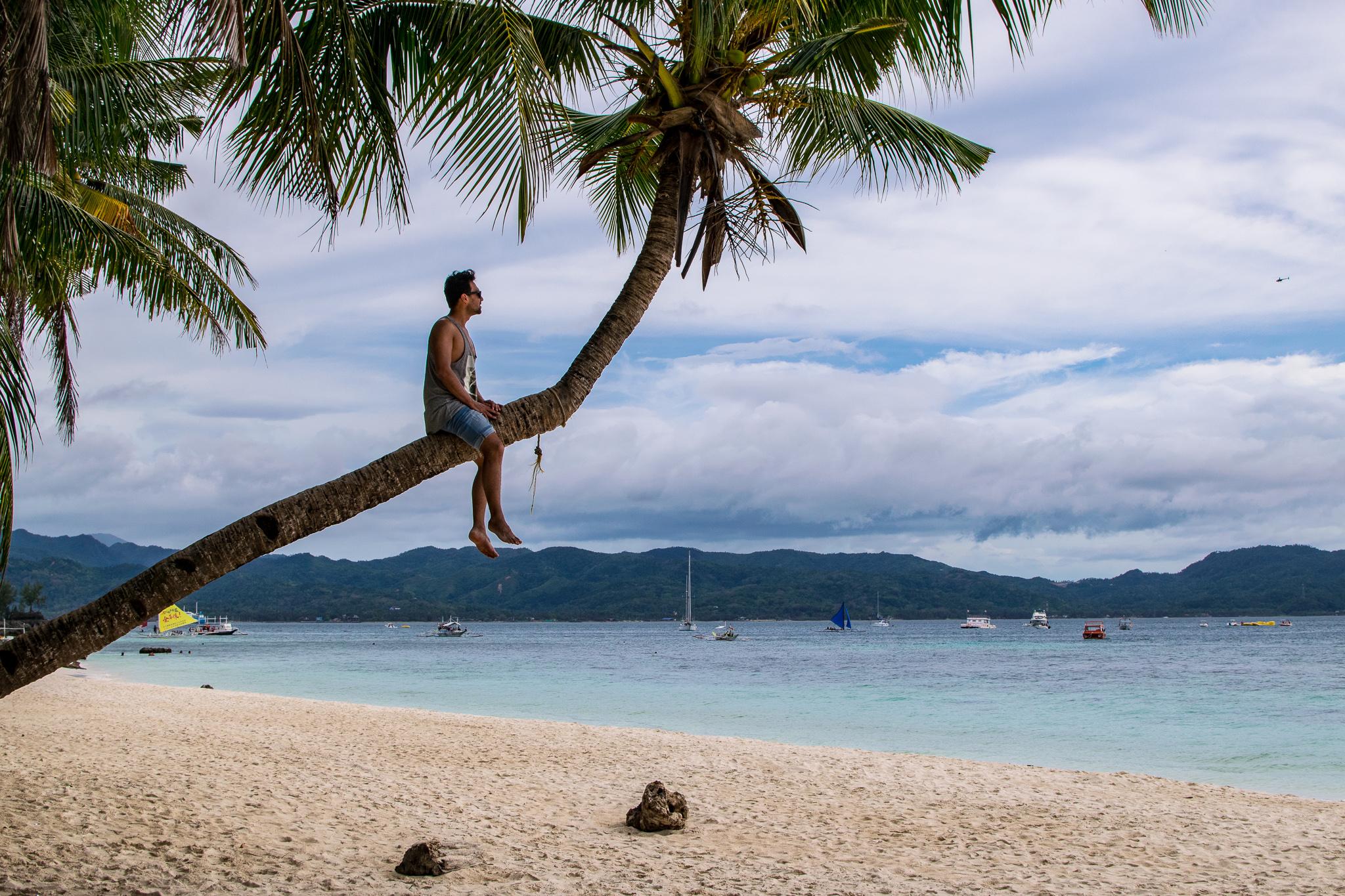 Palmen klettern auf Boracay